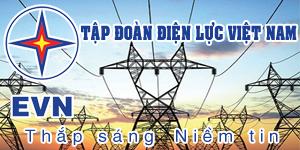 Tập đoàn Điện lực Việt Nam