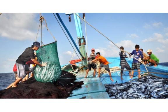 Hoàn tất bồi thường cho người dân trong sự cố môi trường biển trước ngày 30/6