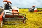 Thông điệp truyền thông khoa học và công nghệ cho nông dân