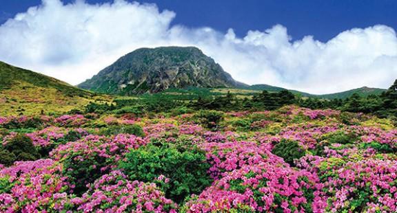 Chinh phục núi Hallasan hùng vĩ tại Jeju – Hàn Quốc