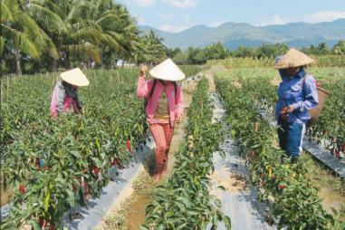 Truyền thông đào tạo nghề cho lao động nông thôn trong kỷ nguyên 4.0